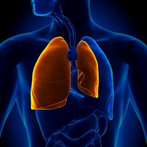 image lobectomie pulmonaire